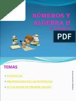 6o Basico Numeros y Algebra II Junio Julio