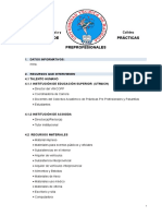 1. Estructura de Programa General de Prácticas Preprofesionales