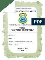 Sistema Excretor - Vmmb