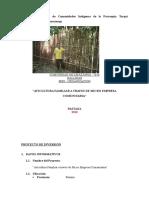 Informe Mbs - Gallinas Jaqueline