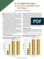 Castro_de_lCampo_Chaidez_Quiroz_Jan2010.pdf