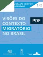 Visoes Do Contexto Migratorio No Brasil