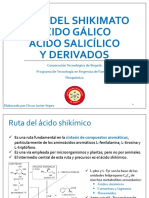 Derivados Del Fenilpropano (1).Pptx