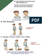 TX Fisioterapico Recuperacion Control Postural y Función MP AVC