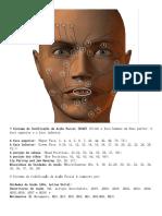 Codificacao Cientifica Da Face Humana-AUs
