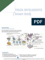 Red Electrica Inteligente (Smart Grid)