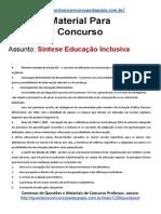 26. sintese Educação Inclusiva.docx.pdf