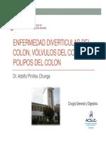 Enfermedades del colon.pdf