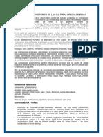 el-legado-etnohistorico-de-las-culturas-precolombinas.docx