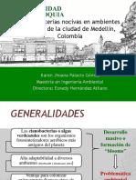 PresentacionGeparGeolimna.pptx