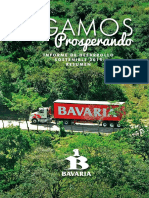 Informe Ds 2015 Resumen Esp Final