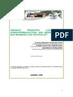 Arranjo Produtivo Local Da Ovinocaprinocultura Nas Microrregiões Dos Inhamuns e Crateús-CE.