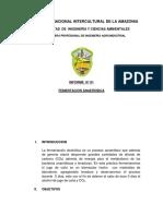 informe 01 biotec.docx