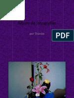 Dianita presenta.pptx