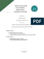 PRACTICA  1 MEC-221.pdf