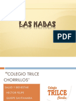 Ensalada de Habas