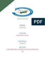 2 fundamento y estructura del curriculo.docx