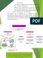 Diapositiva de Medio Ambiente