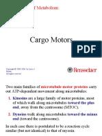 31-micromotor