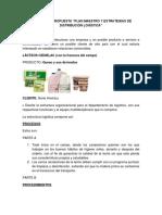 Evidencia 6 Plan Maestro