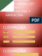 Clindamicina, Ceftriaxona,Cefazolina, Gentamicina y Amikacina-IIIB ANTONY