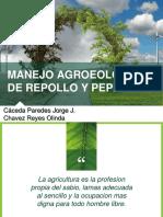 Expo. Agroecología