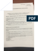 Depetris Programa.pdf