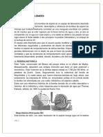 BOMBA-DE-ESPIRAL.docx