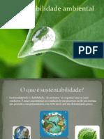 sustentabilidadeambiental-110502130525-phpapp02