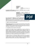 Fundamentos Apelacion - Lesiones Culposas Agravadas