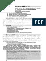 Capitolul VI Excel