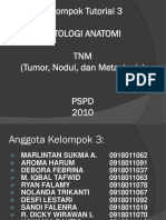 PA indonesia.pptx