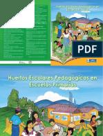 Huertos Escolares Pedagógicos en Escuelas Primarias