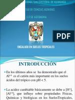 ENCALADO 2018.pdf