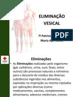 10ª  AULA  CUIDADOS DE ENFERMAGEM ELIMINAÇÃO VESICAL.pdf