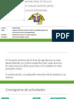 AGROTECNIA DORIS.pptx