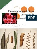 1 Estructuras Reproductivas