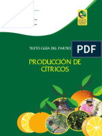 Citric Os Web