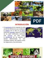 Indicadores Biologicos de Calidad Ambiental Jornada Serrana Nov2009