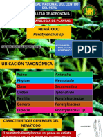 Pratylenchus