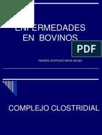ENFERMEDADES CLOSTRIDIALES BOVINOS