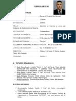 Curriculum Vitae Ronaldo