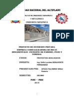 Proyecto Apaza Palomino Wilber Roberts