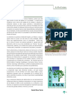 Biología y Compartimentación Del Árbol