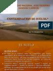 312383457-Contaminacion-de-Suelos.ppt