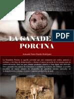 Armando Nerio Guedez Rodríguez - La Ganadería Porcina