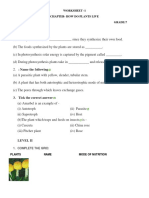 Academic Window BIOLOGY 7 PDF