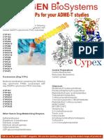 Cypex Flyer