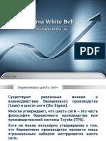 Lean Six Sigma Белый Пояс 1