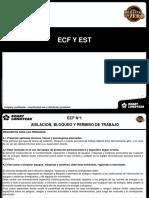 RESUMEN ECF N°4.ppt